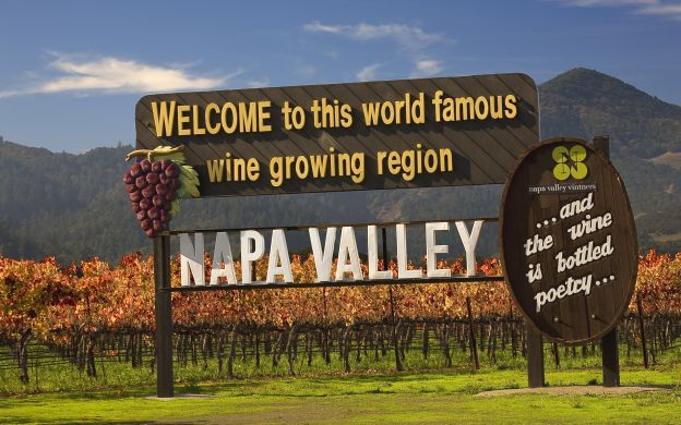 Napa Valley & Sonoma County from San Francisco: Eco Tour, Wine Tasting, Guide