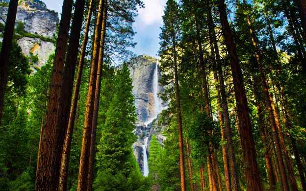 Yosemite Overnighter:  Eco Tour with Lodge Accommodation from San Francisco
