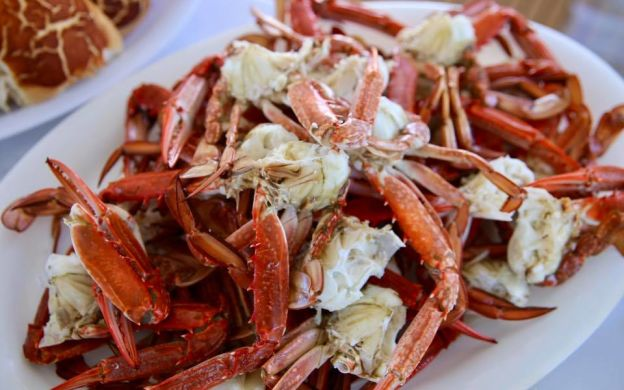 Mandurah Quay to Peel Inlet Cruise: Boundary Island Crabbing Experience + Blue Swimmer Crab Lunch