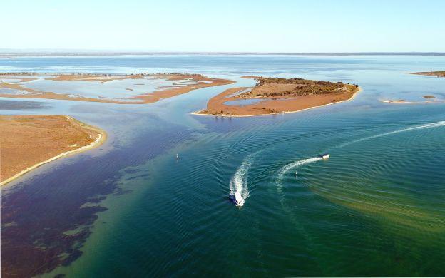 Adventurous Mandurah Cruise: Spot Dolphins and Marine Birds + Peel-Harvey Estuary & Dawesville Cut