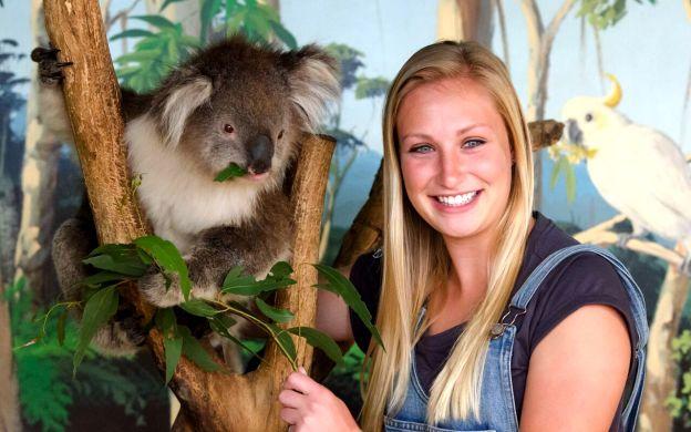 Phillip Island Penguin Parade & Wildlife Tour  - From Melbourne