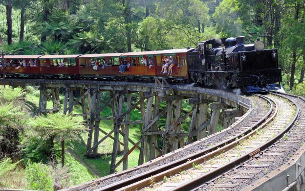 Puffing Billy & Penguin Parade From Melbourne
