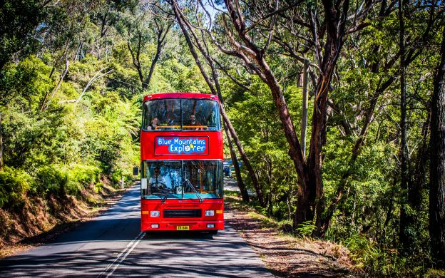 Lyrebird Pass: Blue Mountains Hop-On, Hop-Off Bus Tour and Scenic World Rides Pass