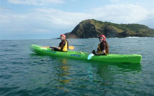 Byron Bay: Dolphin Kayak Tour with Hotel Transfers
