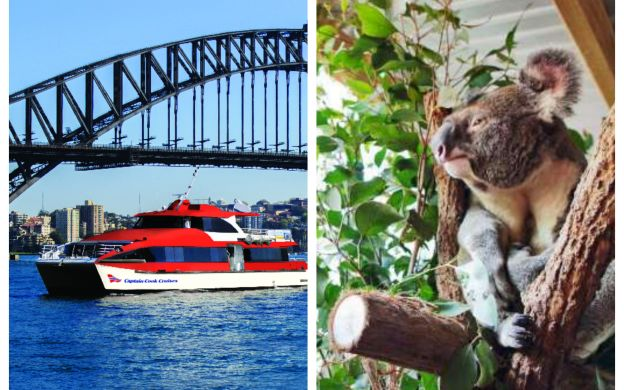 Captain Cook: Hop-On, Hop-Off Cruise and WILD LIFE Sydney Zoo