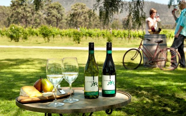 Hunter Valley Wine Tasting Tour with Lunch
