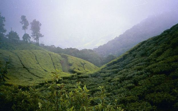 3 Day Stay at Munnar Hill Resort - Tour from Cochin