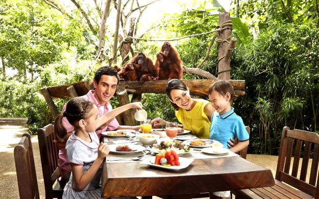 The Wonders of Singapore Zoo: A Guided Tour with Breakfast with Orangutans Upgrade