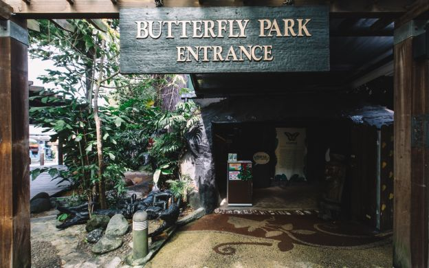 Butterfly Park & Insect Kingdom General Admission Ticket