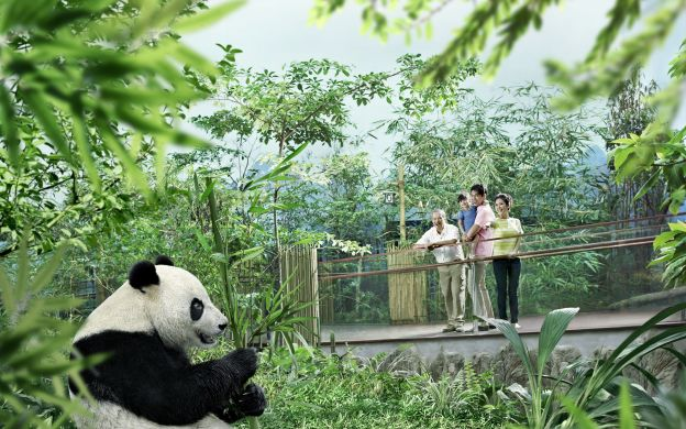 Saver Combo: Singapore Night Safari and River Safari with Hotel Transfers