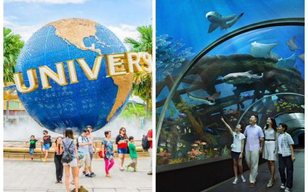 Saver Combo: Universal Studios Singapore™ and S.E.A. Aquarium™ with Hotel Pick-Up