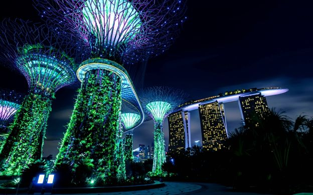 Nightout at Marina Bay Singapore – Dinner, Gardens by the Bay & MBS Skypark