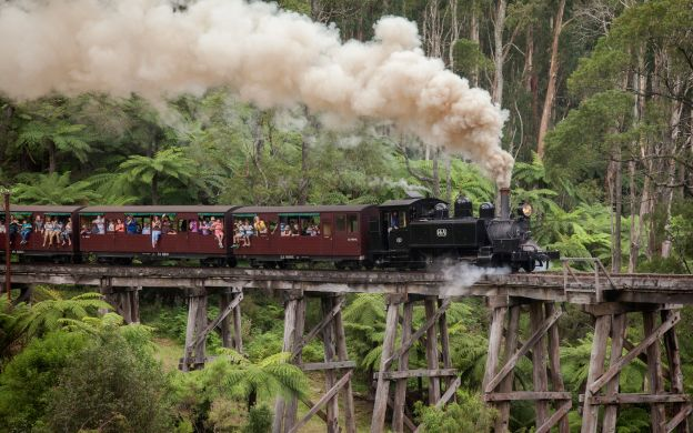 Puffing Billy & Dandenongs Forest Tour, Melbourne