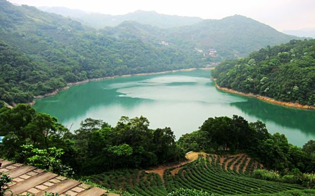 Thousand Island Lake & Pinglin Tea Plantation Tour with Hotel Transfers from Taipei