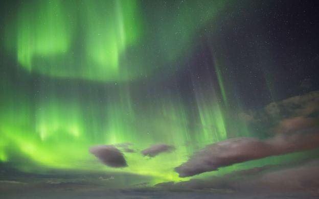 Iceland Northern Lights Tour  - from Reykjavik