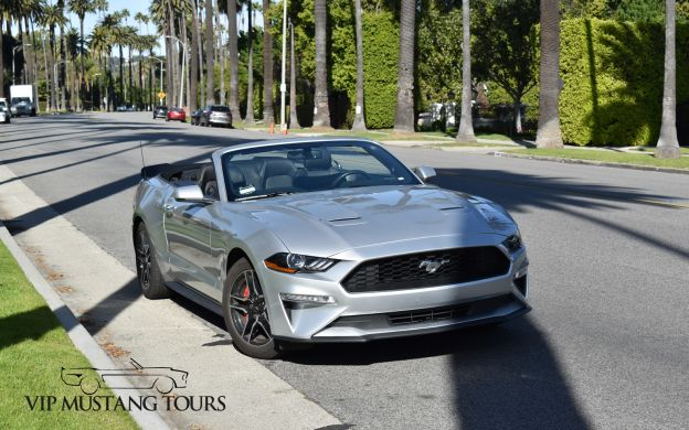 Hollywood Mustang Experience