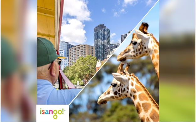City Sightseeing Melbourne Hop-On Hop-Off Bus with Melbourne Zoo