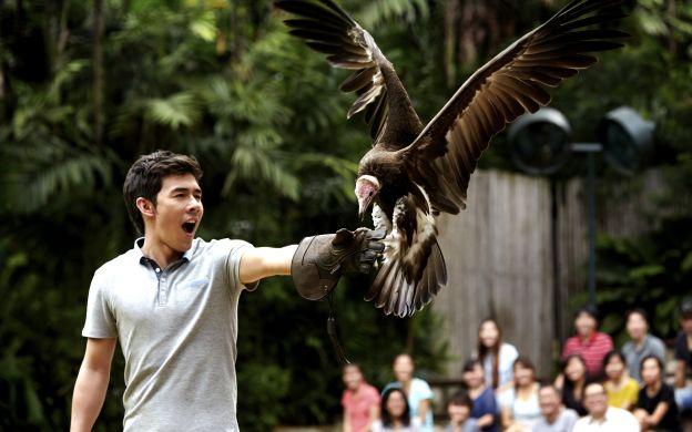 Jurong Bird Park Admission E-ticket with Tram Access