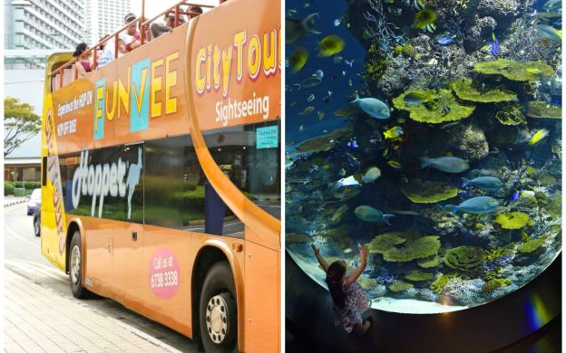 FunVee Hop-On, Hop-Off Bus and S.E.A. Aquarium with Shuttle Transfers