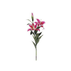 "Casablanca Lilly Flower 35"""