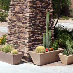 Oblique Rectangular Series Planters