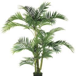 Kentia Palm in Plastic Pot 5'