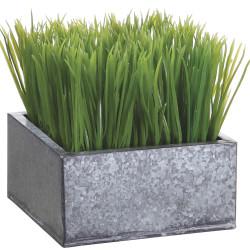 "Grass in Galvanized Planter Green 7""H x 6.5""W x 6.5"""