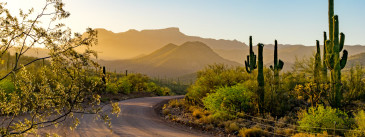 Arizona Unplugged: 5 Digital-Detox Getaways