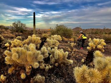 Two-Wheeled Touring: Cycling in Arizona