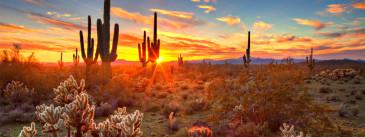 Die 10 besten Dinge, die man in Arizona unternehmen kann