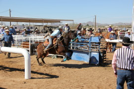 Casa Grande Cowboy Days and O'Odham Tash
