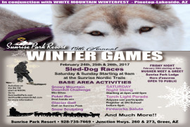 15th Annual Winter Games