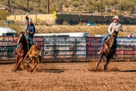 National Team Roping Finals