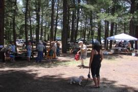 16th Annual Flagstaff Folk Festival