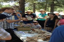 Mushroom Foray & Tasting