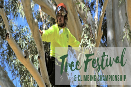 2019 ACTC Tree Festival & Climbing Championship