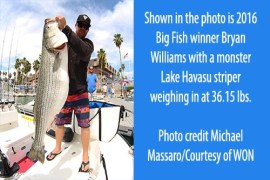 36th Annual Western Outdoor News Lake Havasu Striper Derby