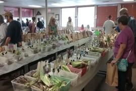 Prescott Area Iris Society Annual Iris Rhizome Sale