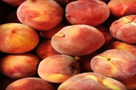 20th Annual Peach Mania Festival