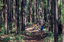 4th Annual Flagstaff Extreme Big Pine Trail Runs