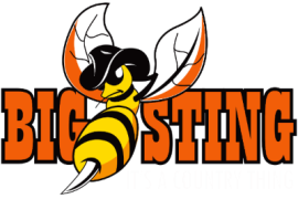 Big Sting – It's a Country Thing
