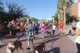 5th Annual Sweat for Pets: Walk, Run & Roll