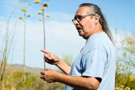 Edible-Medicinal Desert Plants Walk with Jim Shepherd - Dec 8