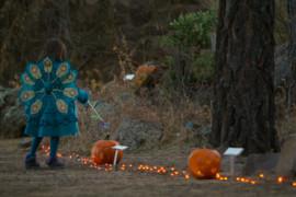 10th Annual Pumpkin Walk