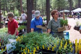 The Arboretum Spring Plant Sale & Fest 2019