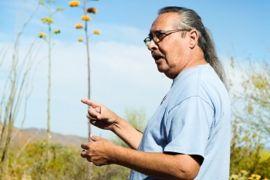 Edible & Medicinal Plants Tour - October 27