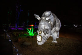 Annual ZooLights: Glow Wild