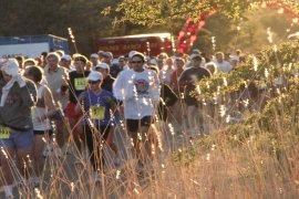 Tucson Marathon, Half-Marathon & Marathon Relay