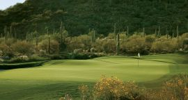 Ritz-Carlton Dove Mountain Unlimited Golf for Two