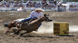 6th Annual Flagstaff Pro Rodeo